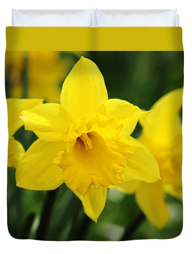 Daffodil Duvet Cover featuring the photograph Cheerful Trumpets by Debbie Oppermann