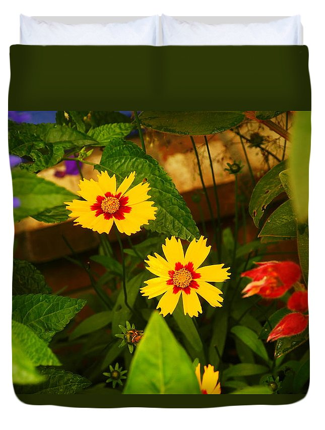 Flowers Duvet Cover featuring the photograph Bright Yellow Flowers by Jeff Swan