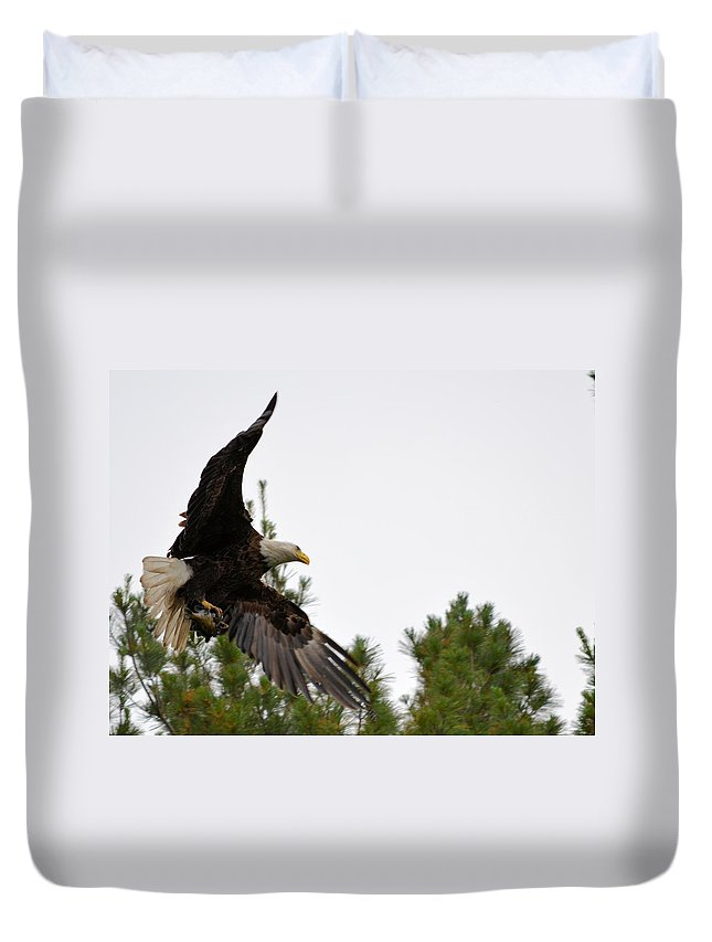 Eagle Duvet Cover featuring the photograph Bringing Home Dinner by Bonfire Photography