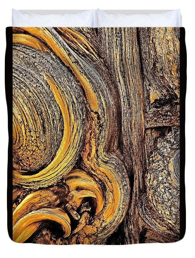 Bristlecone Pine Duvet Cover featuring the photograph Bristlecone Pine Bark Detail White Mountains Ca by Dave Welling