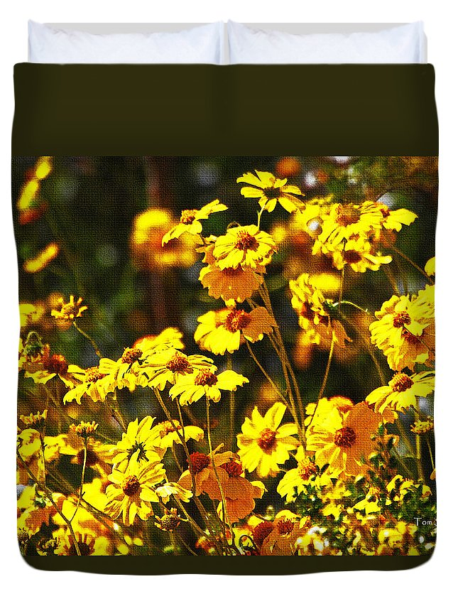 Brittle Bush In Bloom Duvet Cover featuring the photograph Brittle Bush In Bloom by Tom Janca