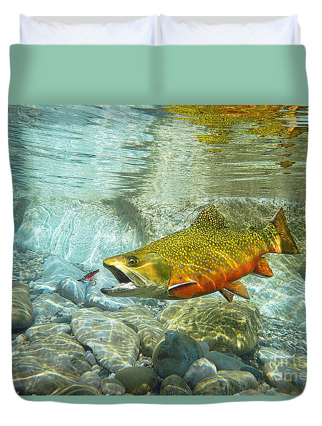 Trout Paintings Duvet Cover featuring the painting Brook Trout And Artificial Fly by Paul Buggia