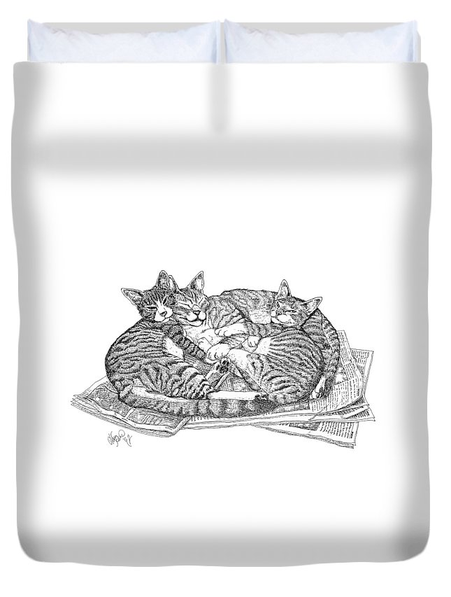Cats Duvet Cover featuring the drawing Brothers by Glenn Scano