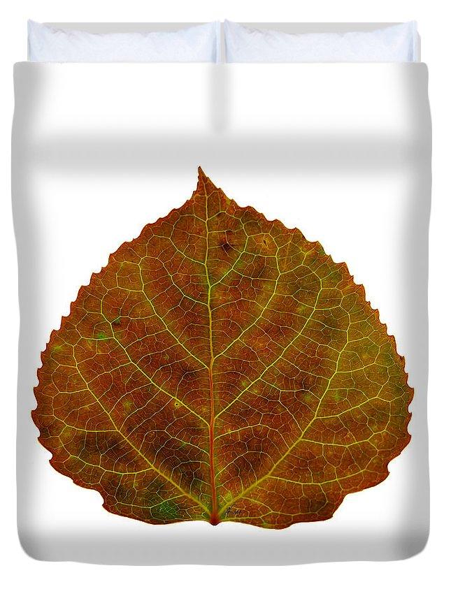 Aspen Leaf Duvet Cover featuring the digital art Brown Aspen Leaf 2 by Agustin Goba