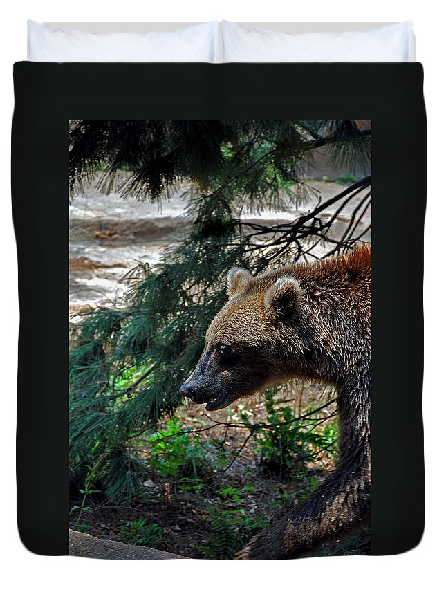 Bear Duvet Cover featuring the photograph Brown Bear by Skip Willits