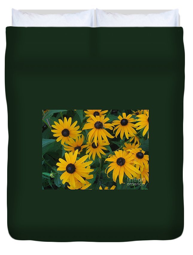 Brown Duvet Cover featuring the photograph Brown Eyed Susans by Ray Konopaske