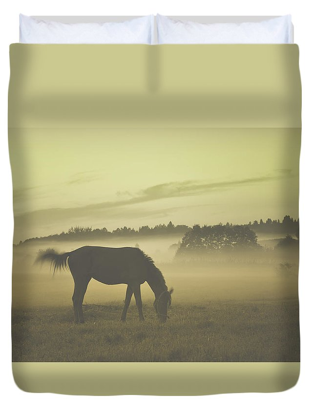 Animal Duvet Cover featuring the photograph Brown Horse by  larisa Fedotova