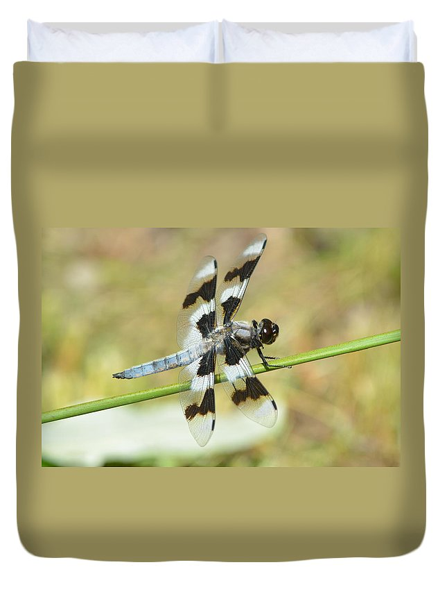Double Duvet Cover featuring the photograph Brown Striped Double Winged Dragonfly by Nicki Bennett