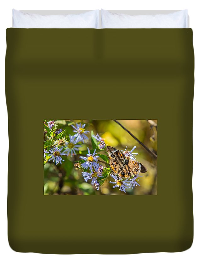 Buckeye Duvet Cover featuring the photograph Buckeye Butterfly by John Haldane