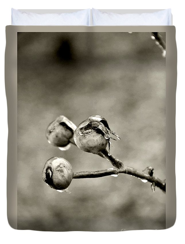 Flower Duvet Cover featuring the photograph Buds On Ice II by Bonnie Myszka