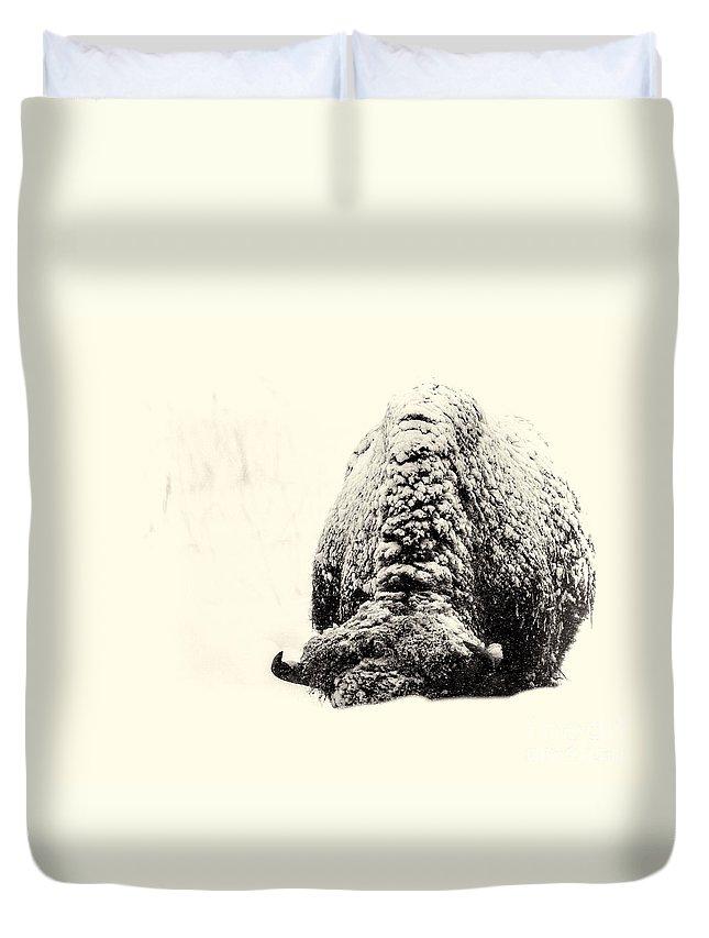 Buffalo Duvet Cover featuring the photograph Buffalo Hump by Jim Garrison
