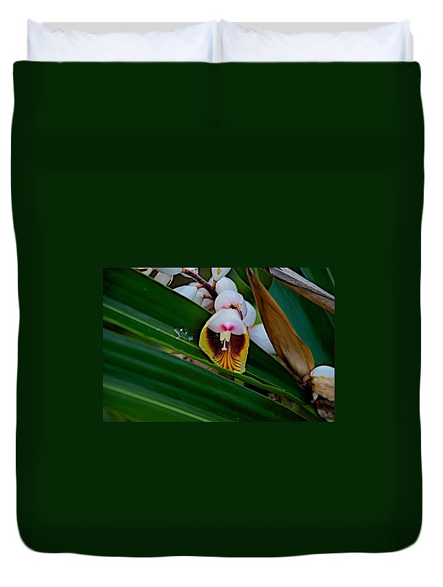 Blossom Duvet Cover featuring the photograph Bug by Joseph Yarbrough