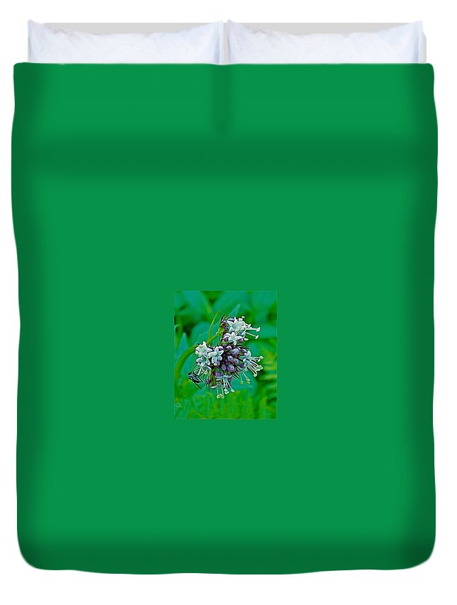 Bug On Wild Mint On Great Glacier Trail In Glacier National Park Duvet Cover featuring the photograph Bug On Wild Mint On Great Glacier Trail In Glacier National Park-british Columbia by Ruth Hager