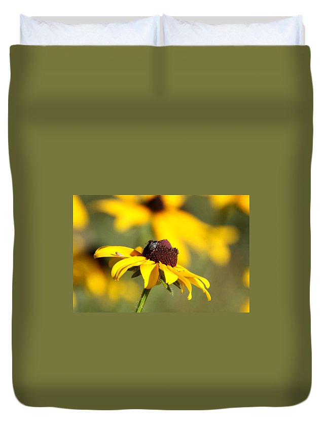 Bug Duvet Cover featuring the photograph Bugs by Tina Meador