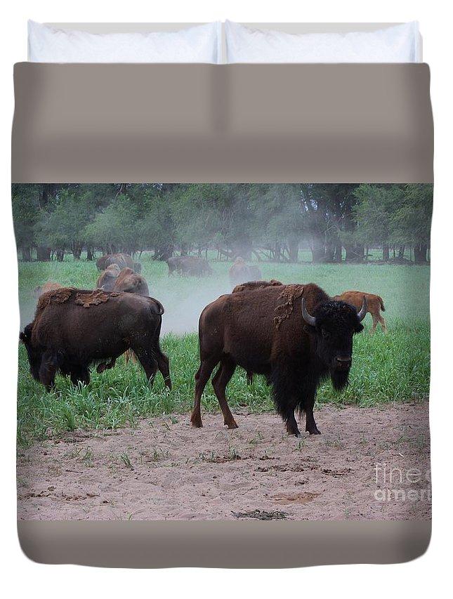 Buffalo Duvet Cover featuring the photograph Bull Buffalo Guarding Herd With Green Grass by Robert D Brozek