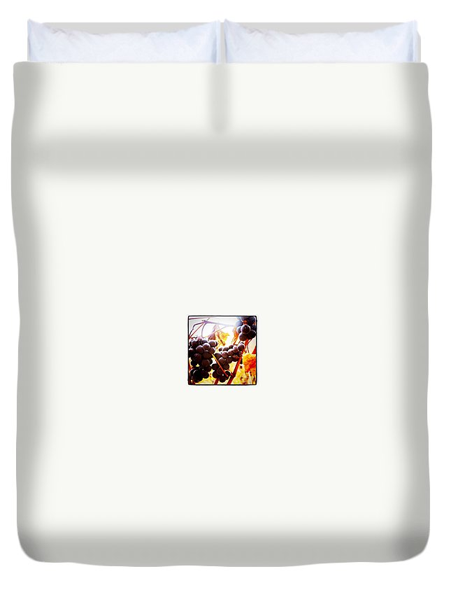 Grapes Duvet Cover featuring the photograph Bunches 3  by Justin Connor