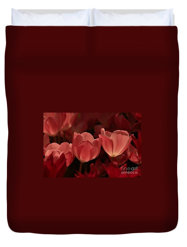 Flower Duvet Cover featuring the photograph Burgundy Tulips by Kathleen Struckle