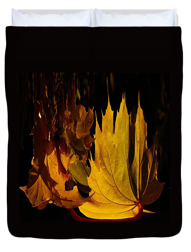 Lehto Duvet Cover featuring the photograph Burning Fall by Jouko Lehto