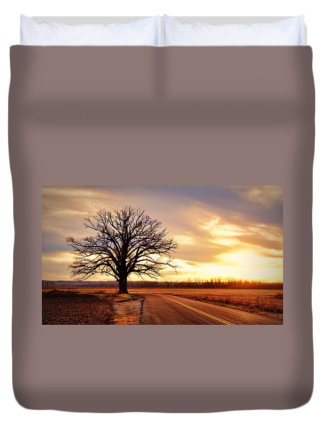 Old Duvet Cover featuring the photograph Burr Oak Silhouette by Cricket Hackmann