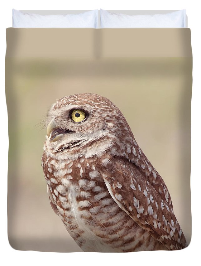 Wildlife Duvet Cover featuring the photograph Burrowing Owl by Kim Hojnacki
