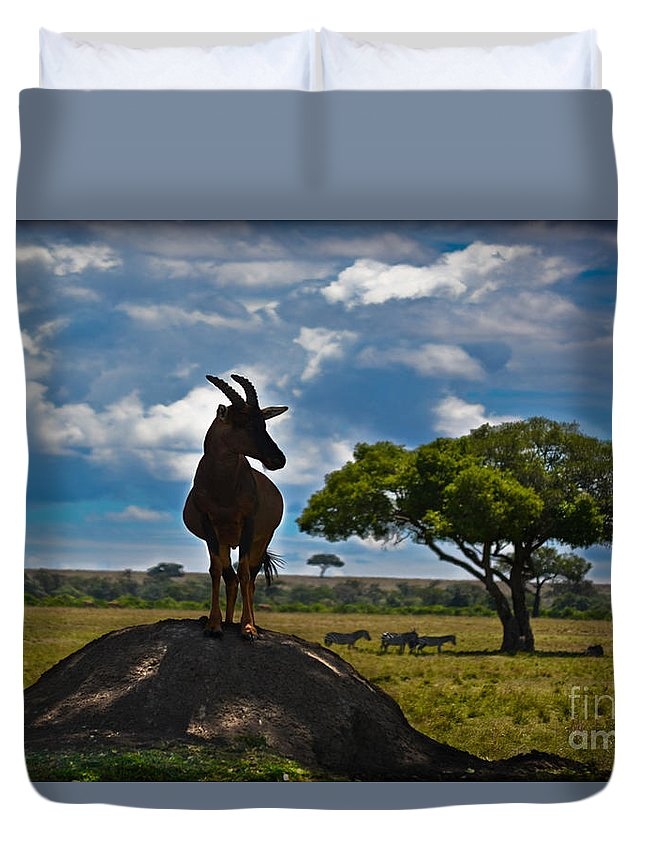 Bushbuck Duvet Cover featuring the photograph Bushbuck Guard Of The Mound  by Gary Keesler