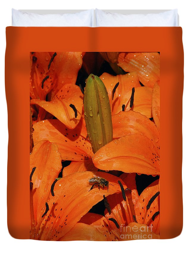 Day Lily Duvet Cover featuring the photograph Busy Bee - 774 by Paul W Faust - Impressions of Light