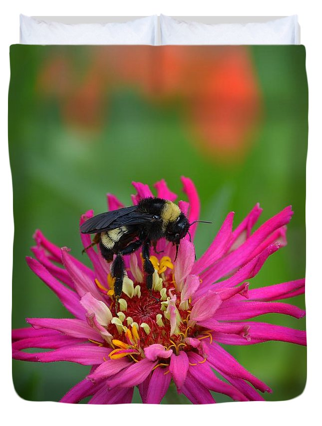 Bee Duvet Cover featuring the photograph Busy Bee by Gale Cochran-Smith