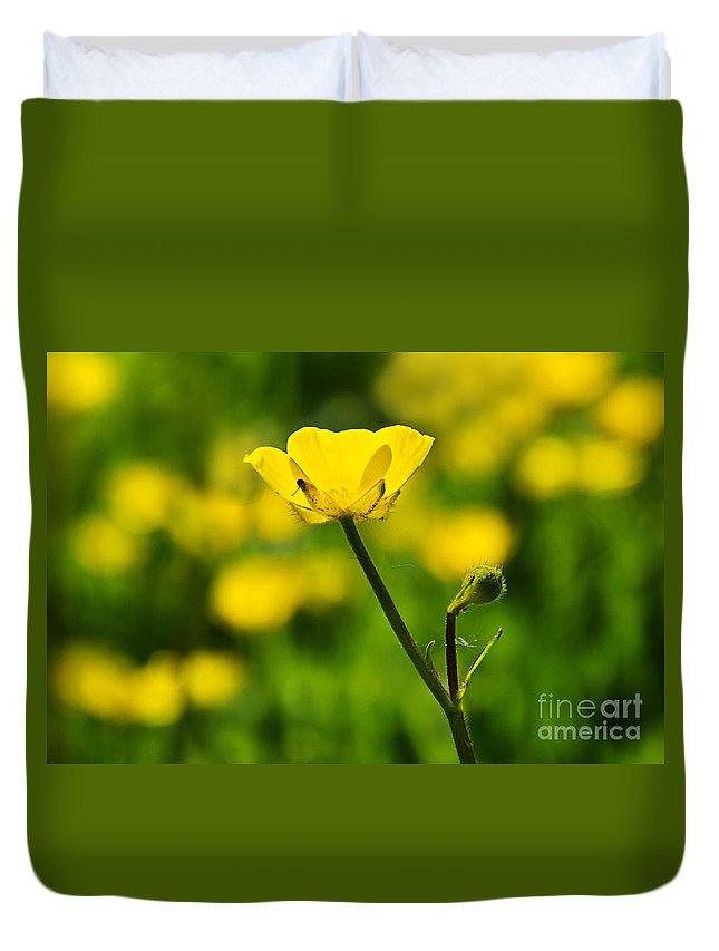 Peek-swint Duvet Cover featuring the photograph Buttercups by Susie Peek