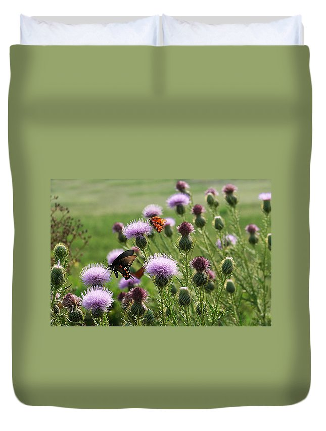 Cirsium Vulgare Duvet Cover featuring the photograph Butterflies And Bull Thistle Wildflowers by Kathy Clark
