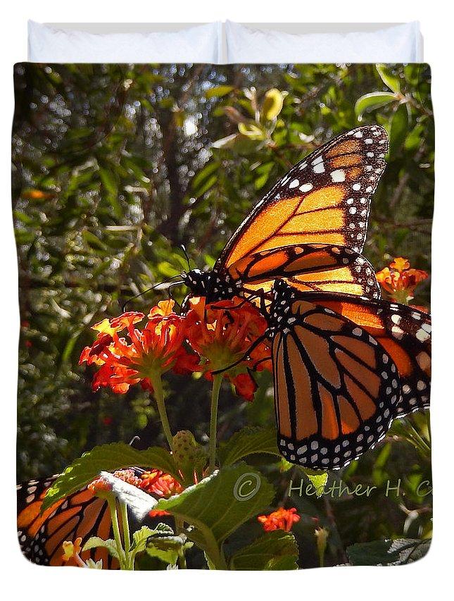 Butterflies Duvet Cover featuring the photograph Butterflies Three by Heather Coen