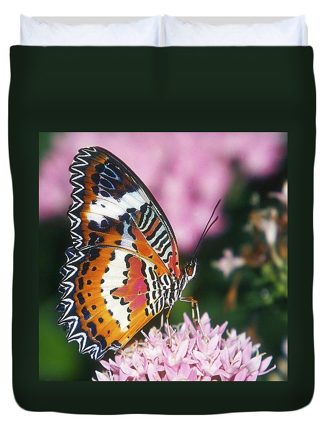 Butterfly Duvet Cover featuring the photograph Butterfly 012 by Ingrid Smith-Johnsen