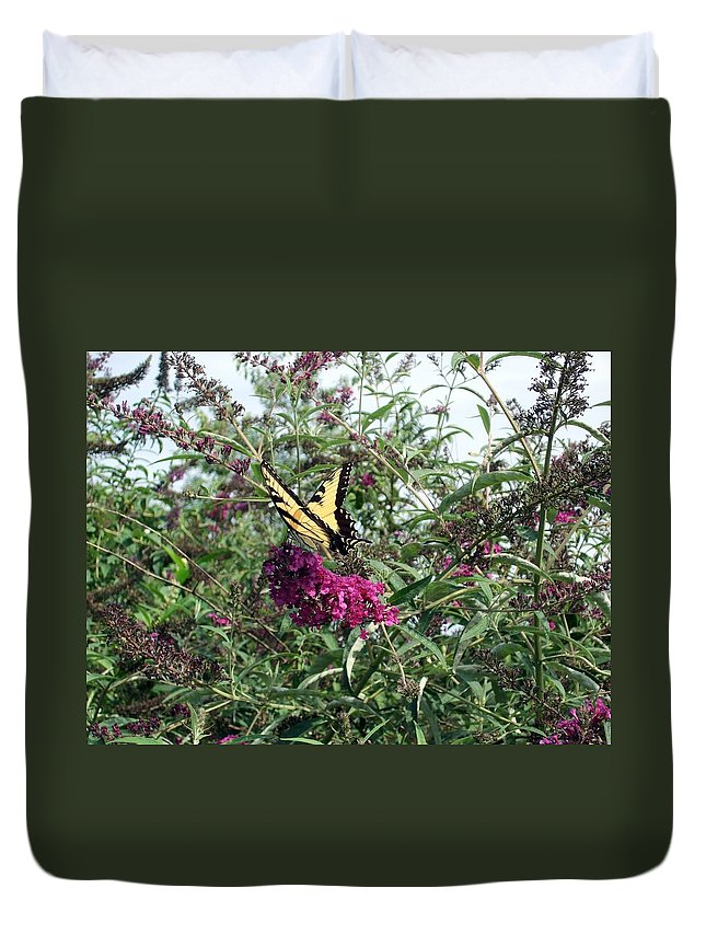 Butterfly Duvet Cover featuring the photograph Butterfly Bush by Lisa Wormell