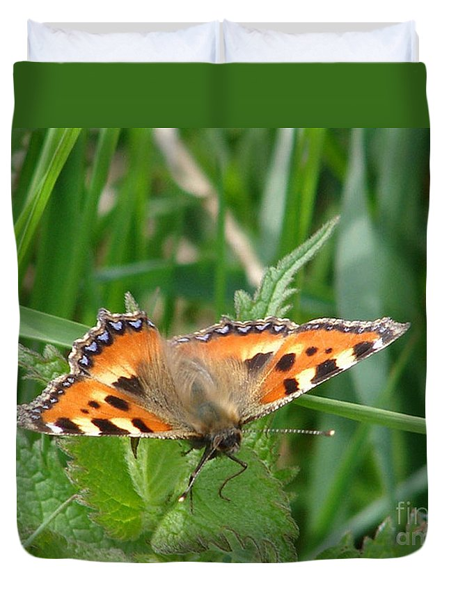 Butterfly Duvet Cover featuring the photograph Butterfly by Carol Lynch