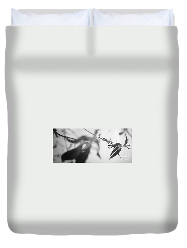 Plant Duvet Cover featuring the photograph Butterfly Effect by Chet B Simpson
