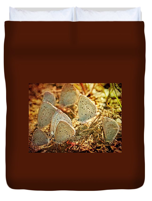 Butterflies Duvet Cover featuring the photograph Butterfly Gathering by Peggy Collins