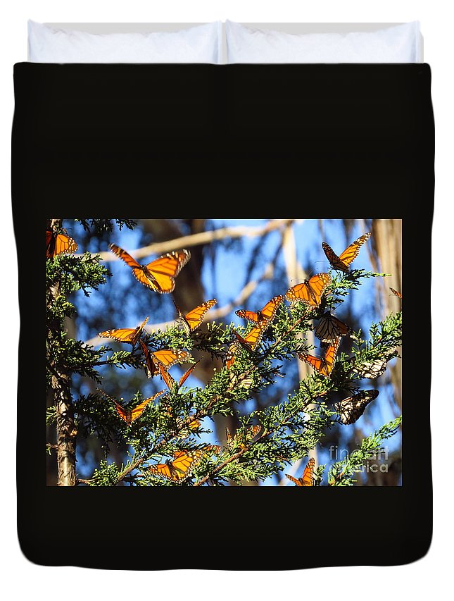 Monarch Duvet Cover featuring the photograph Butterfly Goodbye by Craig Corwin