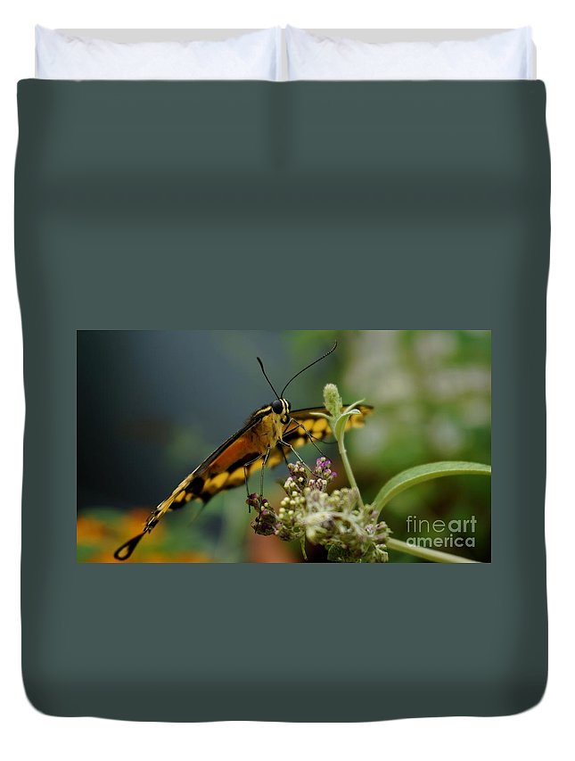 Animal Duvet Cover featuring the photograph Butterfly Kiss by Mickey At Rawshutterbug