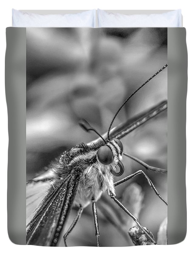 Lepidoptera Duvet Cover featuring the photograph Butterfly by Mickey At Rawshutterbug