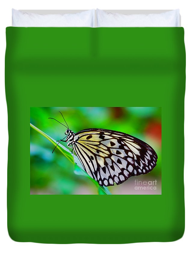 Colorful Duvet Cover featuring the photograph Butterfly On A Leaf by Nick Biemans