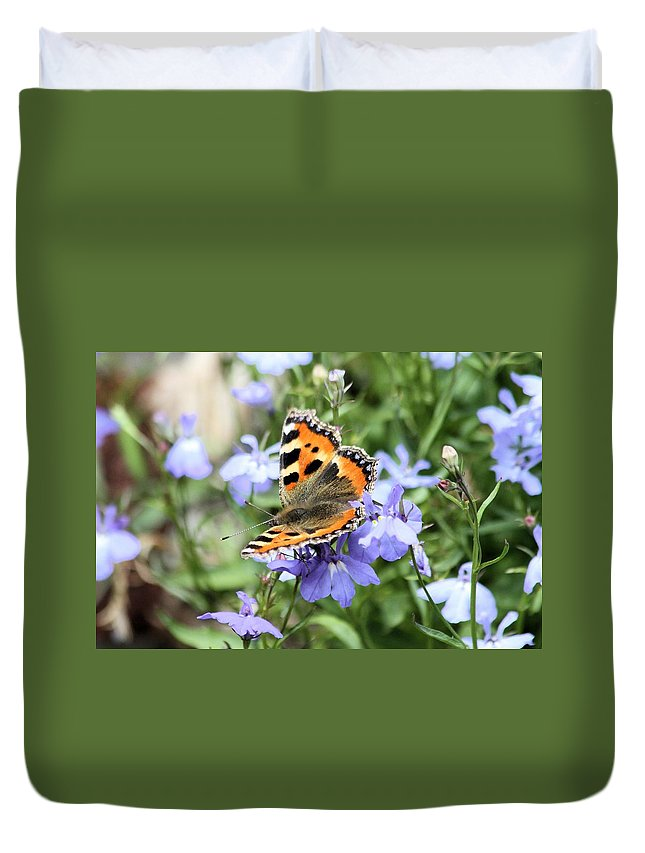 Butterfly Duvet Cover featuring the photograph Butterfly On Blue Flower by Gordon Auld