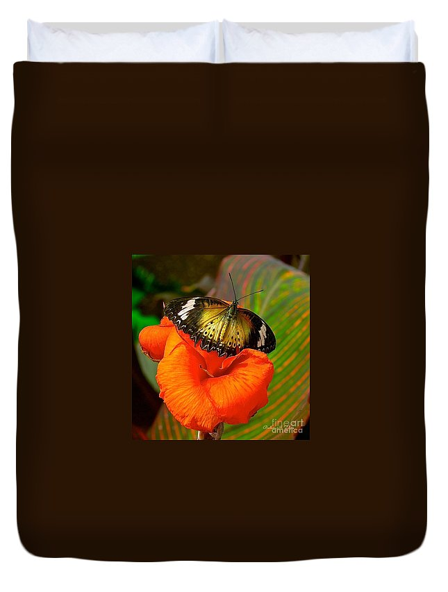 Butterflies Duvet Cover featuring the photograph Butterfly On Canna Flower by Barbara Zahno