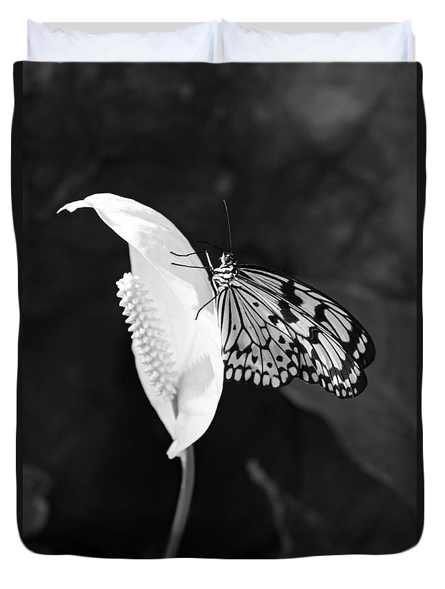 Butterfly On Peace Lilly Duvet Cover featuring the photograph Butterfly On Peace Lilly by Julia Gavin