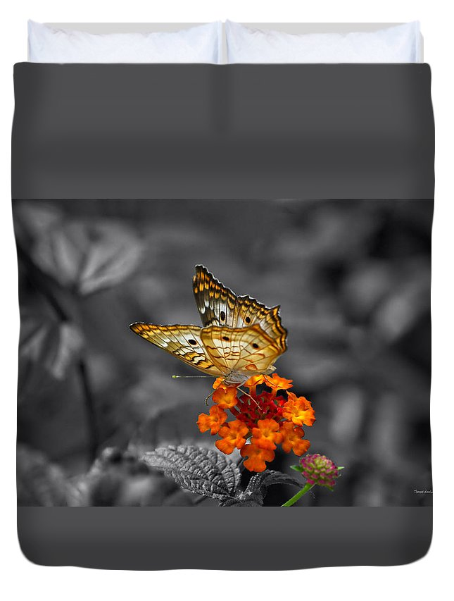 Il Duvet Cover featuring the photograph Butterfly Wings Of Sun Light Selective Coloring Black And White Digital Art by Thomas Woolworth