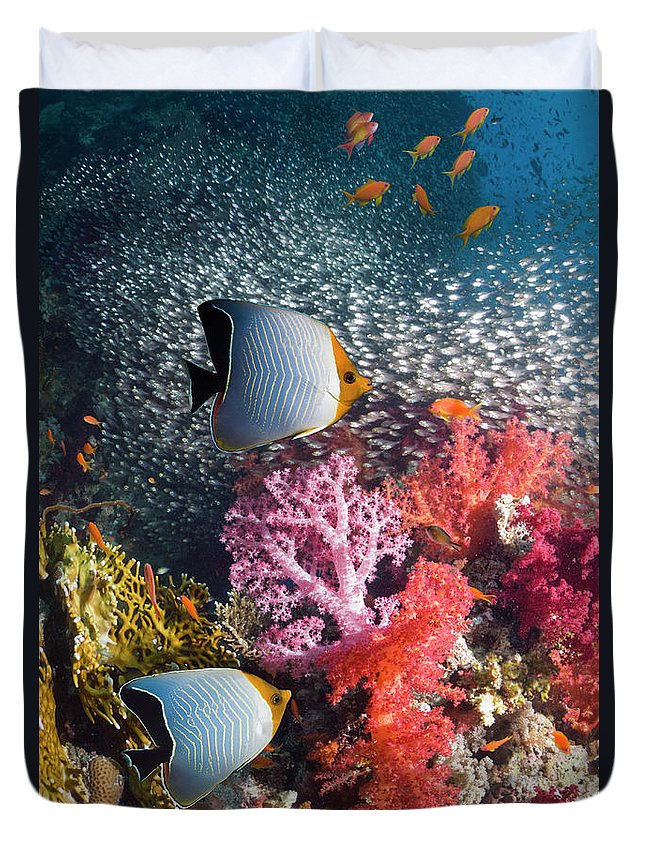 Tranquility Duvet Cover featuring the photograph Butterflyfish Over Coral Reef by Georgette Douwma