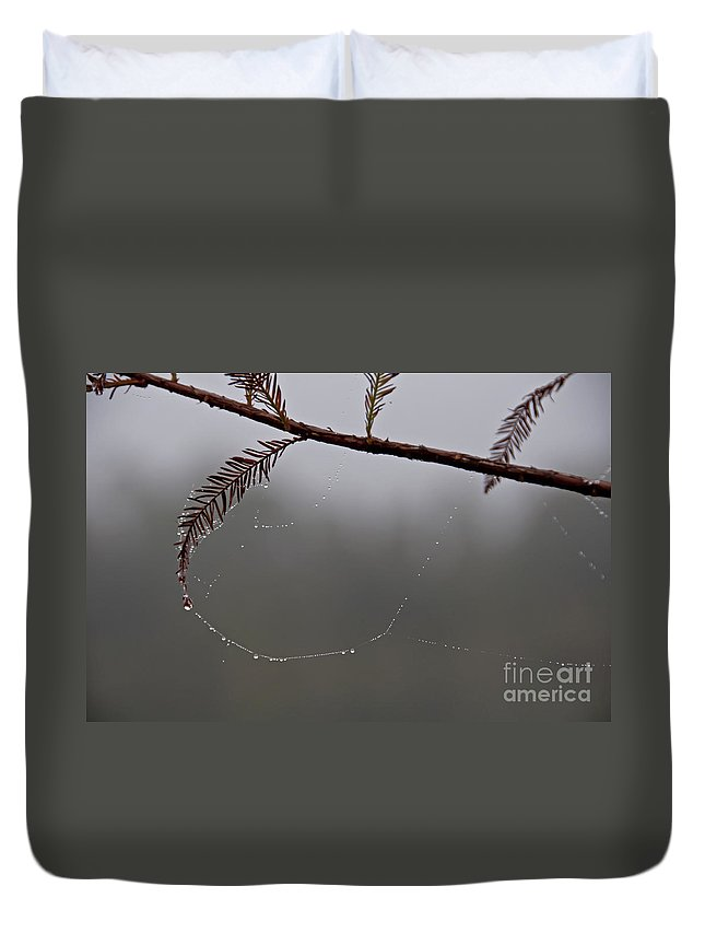 Cypress Duvet Cover featuring the photograph C Is For Cypress by Roy Thoman