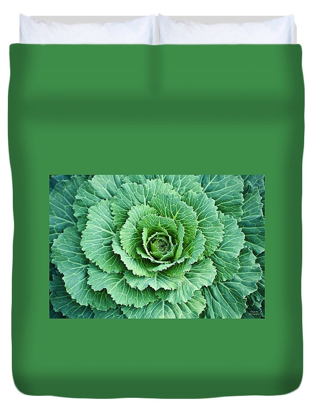 Cabbage Duvet Cover featuring the photograph Cabbage Leaves by Diego Re