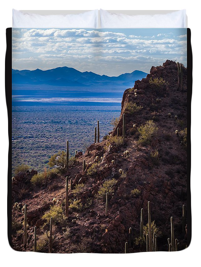 Tucson Mountain Park Duvet Cover featuring the photograph Cacti Covered Rock At Tucson Mountains by Ed Gleichman