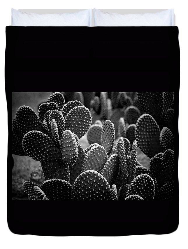 Botanicals Duvet Cover featuring the photograph Cactus 5252 by Timothy Bischoff