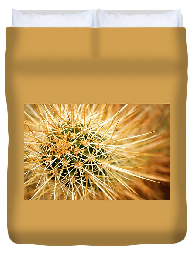 Sharp Duvet Cover featuring the photograph Cactus by Brianbalster