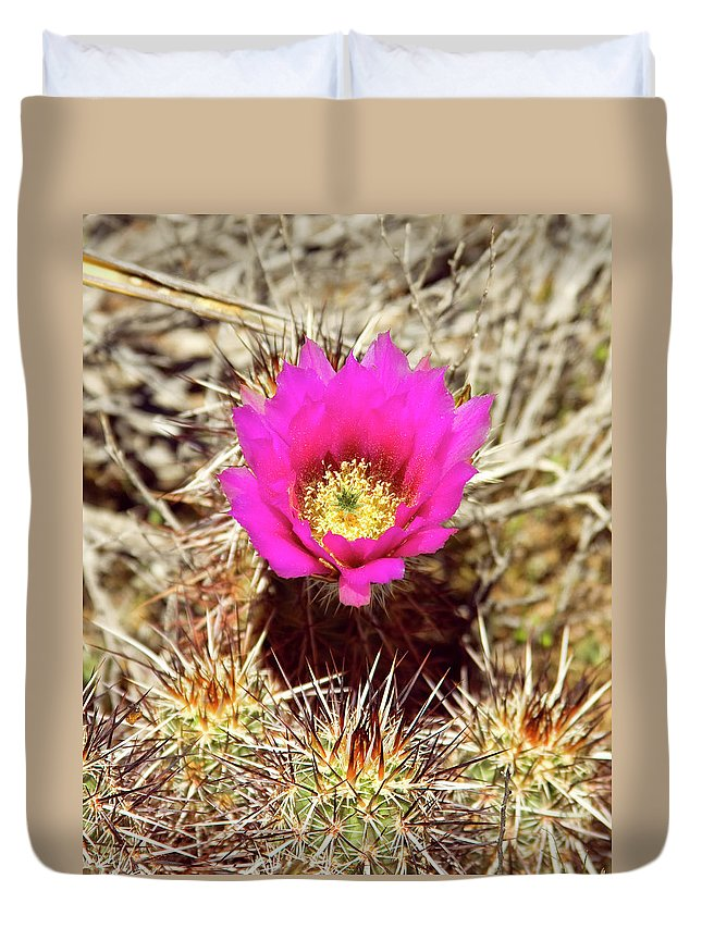 Pink Flower Duvet Cover featuring the photograph Cactus Flower Palm Springs by William Dey